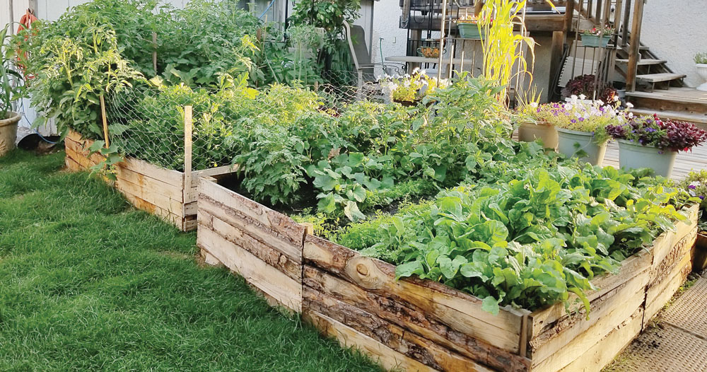 Raised Bed Out Of Pallet Boards, Build Raised Garden Bed Out Of Pallets